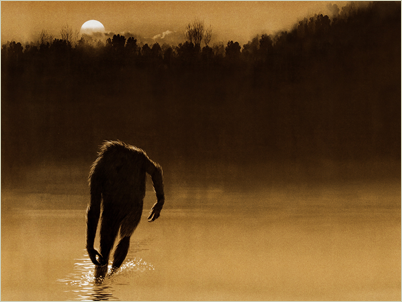 The Legend of Boggy Creek preview